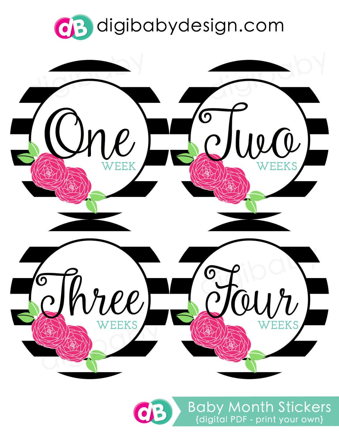 Black White Floral Baby Girl Print Baby Month Stickers Baby Milestone Stickers
