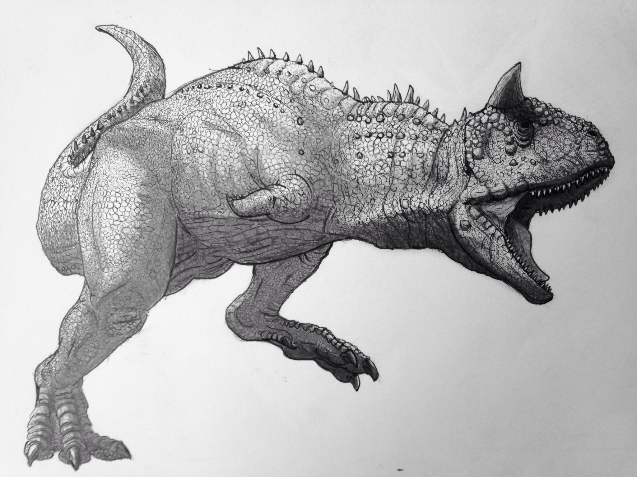 """Carnotaurus"" Pencil and ink. Dinosaur drawing, Dinosaur"