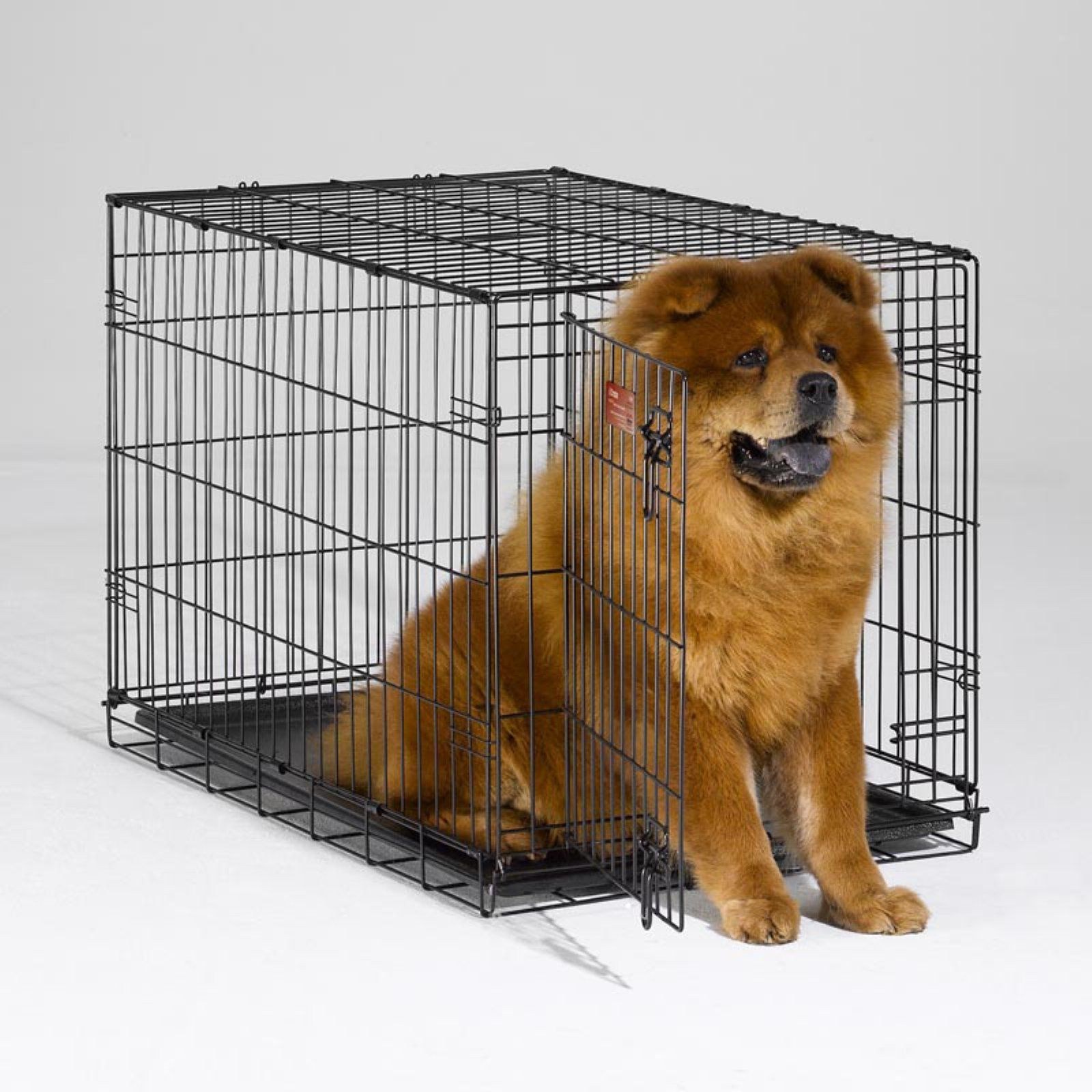 Midwest Icrate Folding Single Door Dog Crate Dog Crate Folding