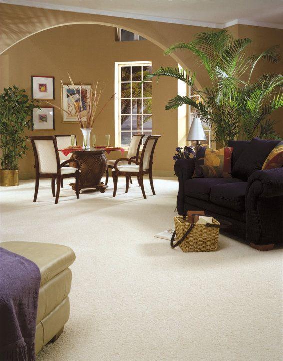 Tigressa Softstyle Carpet Carpet Flooring Flooring Residential Interior Design