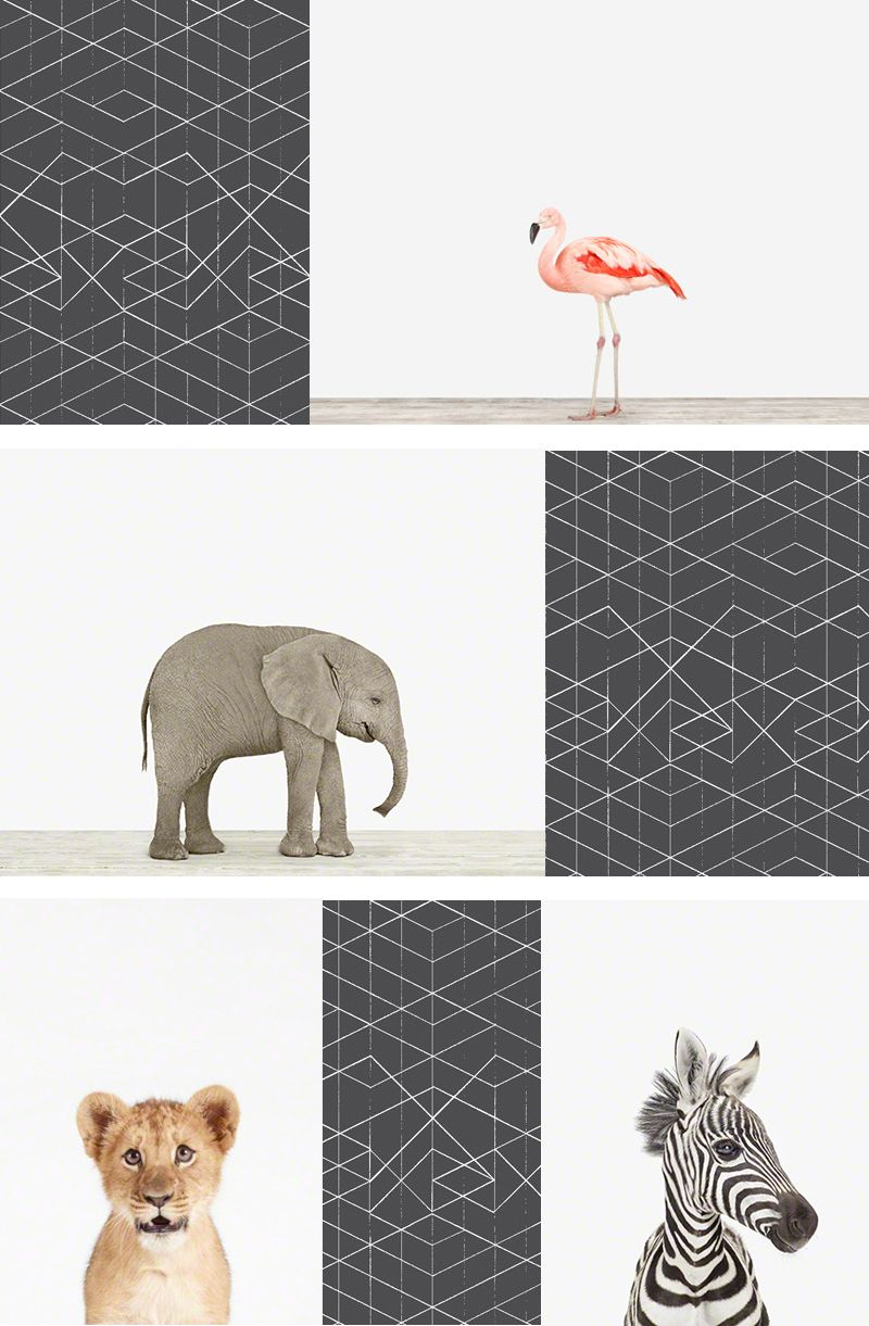 Sophisticated Art For Babys Room Shop Our Charming Collection Of Baby Animals
