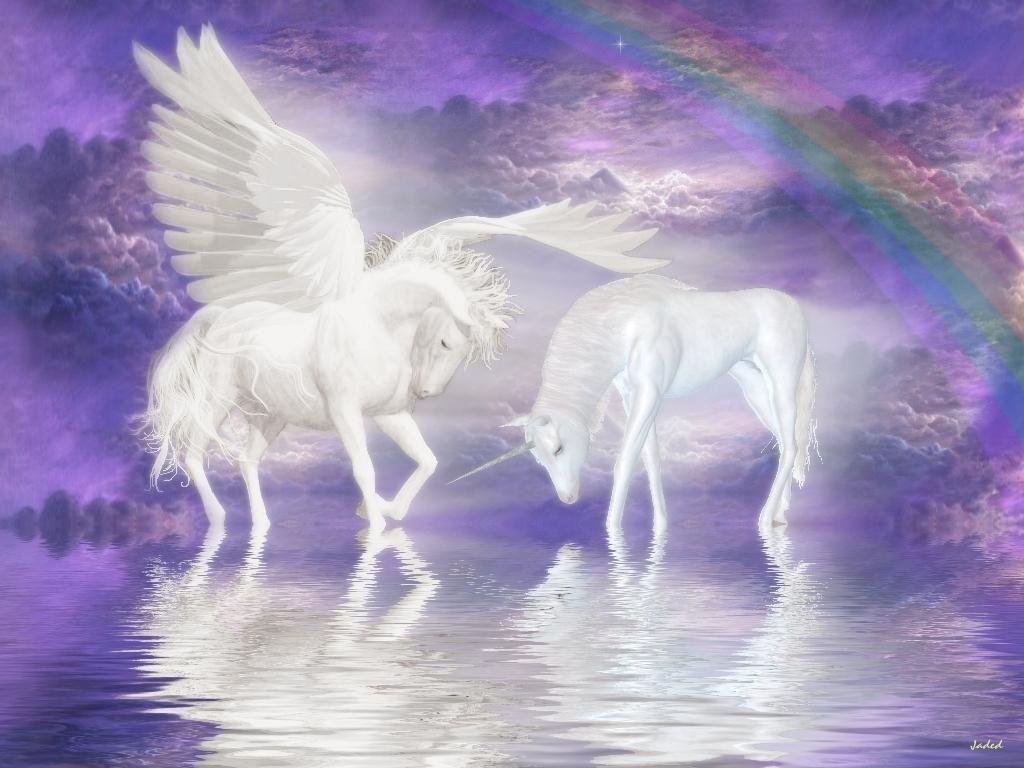 Pegasus Horse White Pegasus And Unicorn Horse Wallpaper Unicorn And Fairies Unicorn Images Unicorn Fantasy