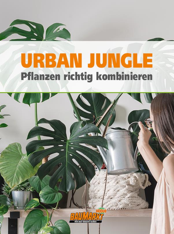 Urban Jungle Pflanzen Richtig Kombinieren In 2020 Pflanzen Grunpflanzen Zimmerpflanzen