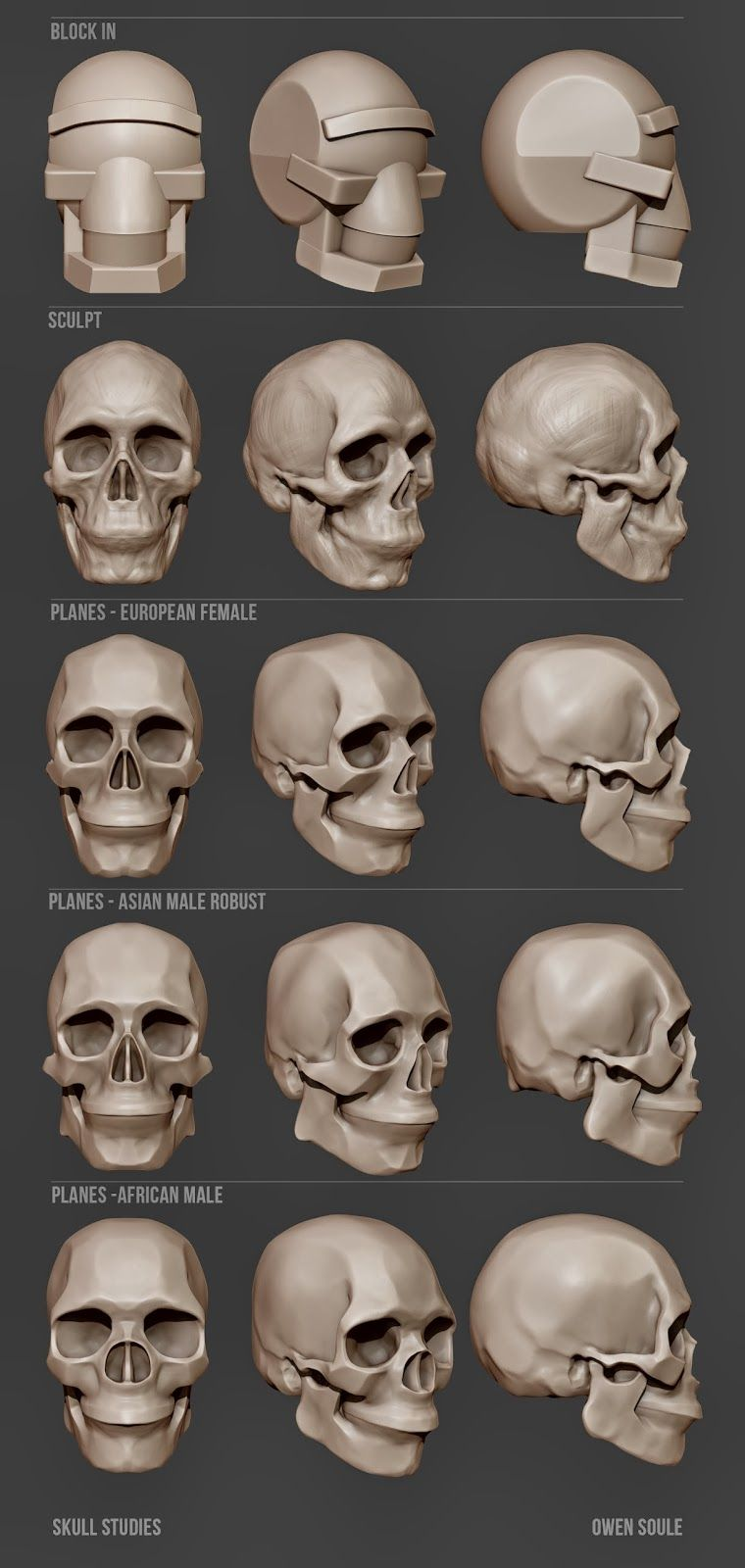 Pin by Johnny Walker on Sculpture | Pinterest | Anatomy, ZBrush and 3d