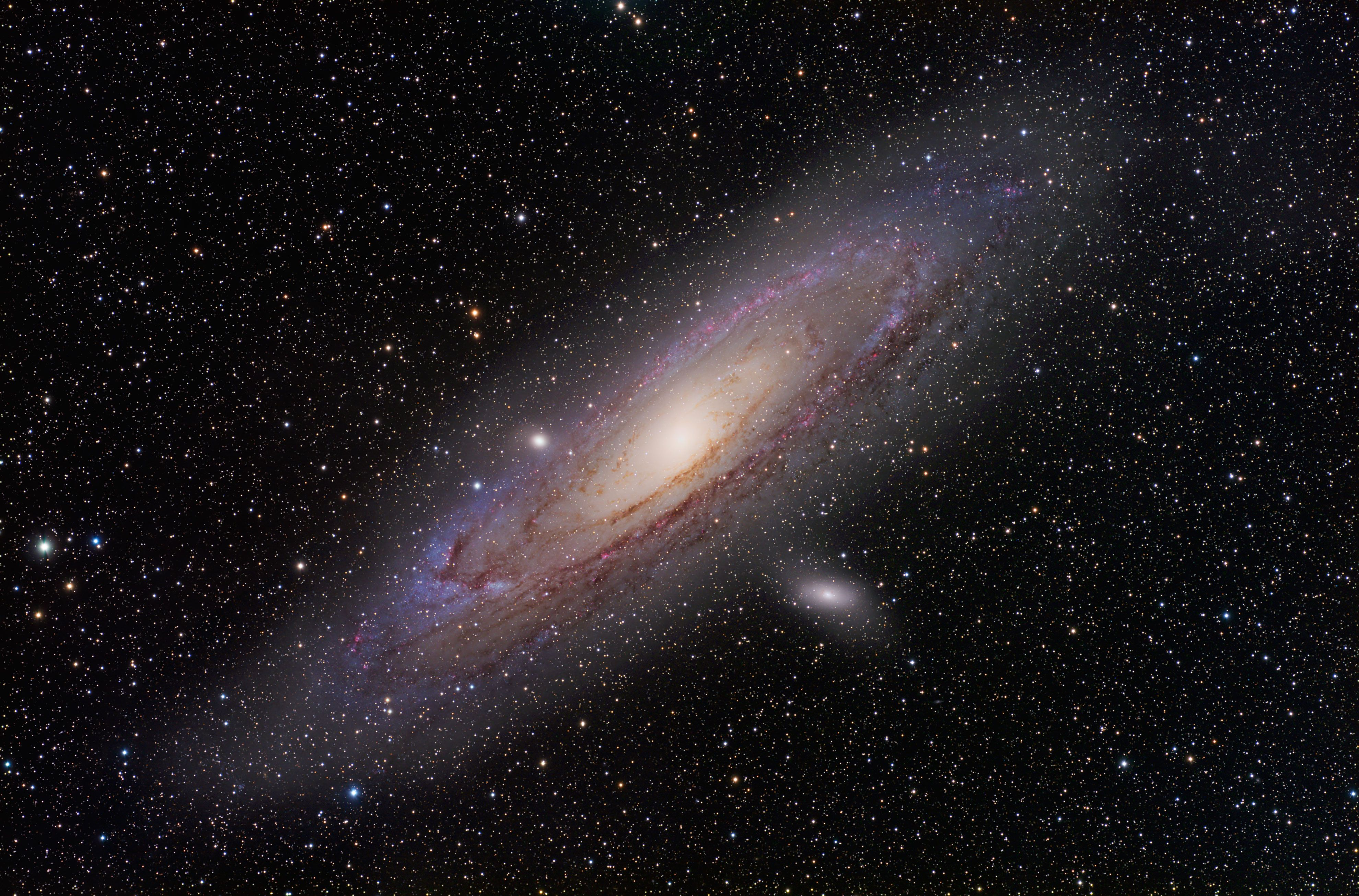 Pin By Robert Picardo On Portrait Hubble Pictures Hubble Andromeda Galaxy