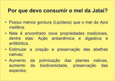 Os Beneficios Medicinais Do Mel De Abelhas Jatai Em 2020 Abelha