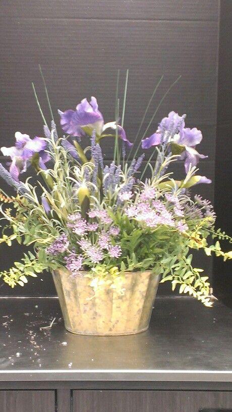 Love purple Iris...Robin Evans