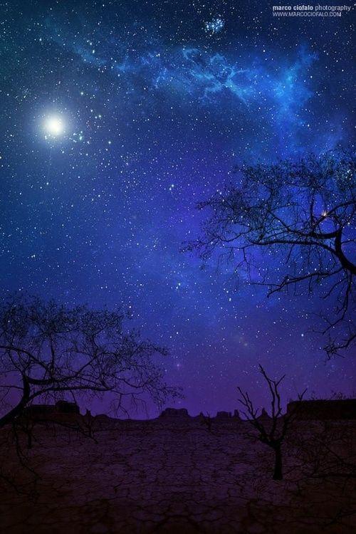 Desert Moon Stars Night Skies Star Sky Nature