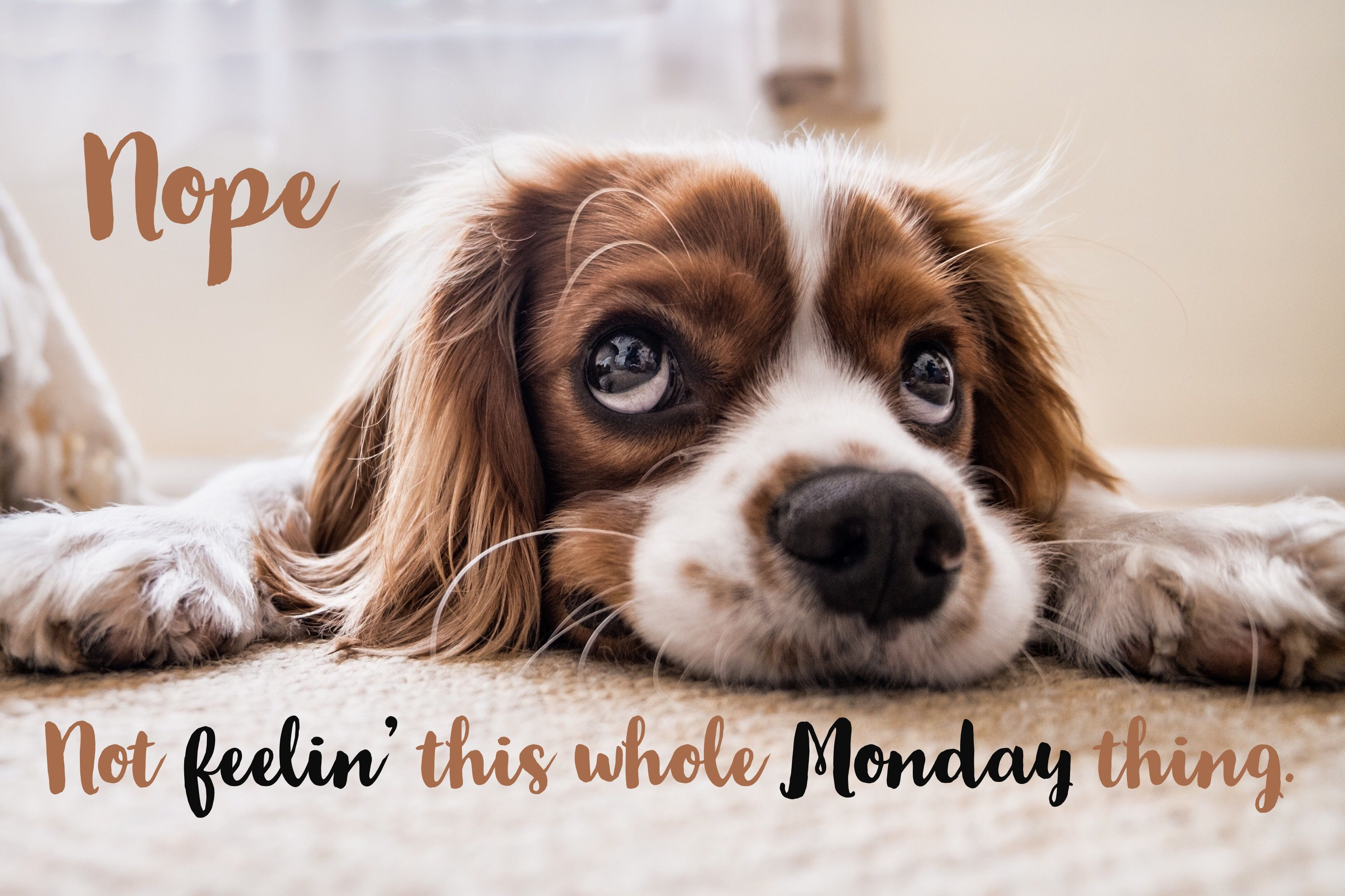 MondayMotivation Sure it's the beginning of the week, so