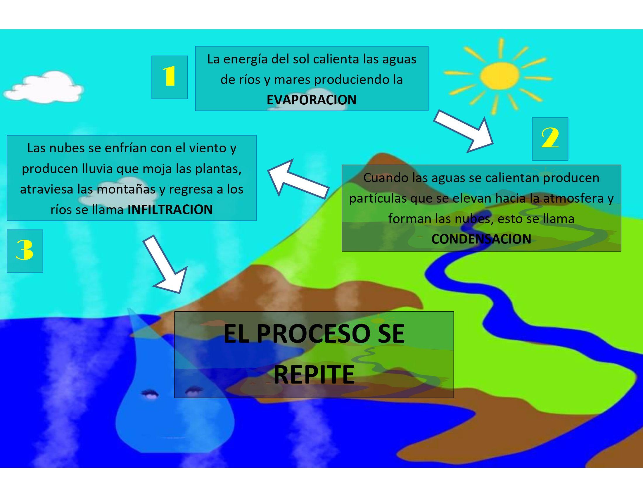 Descripcion Del Ciclo Del Agua Ciclo Del Agua Agua Fases Del Agua