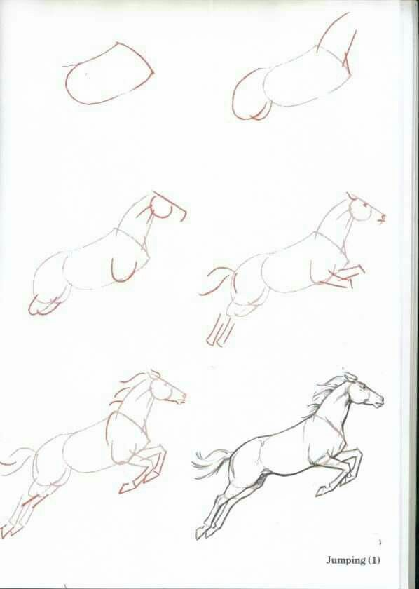 How To Draw A Jumping Horse