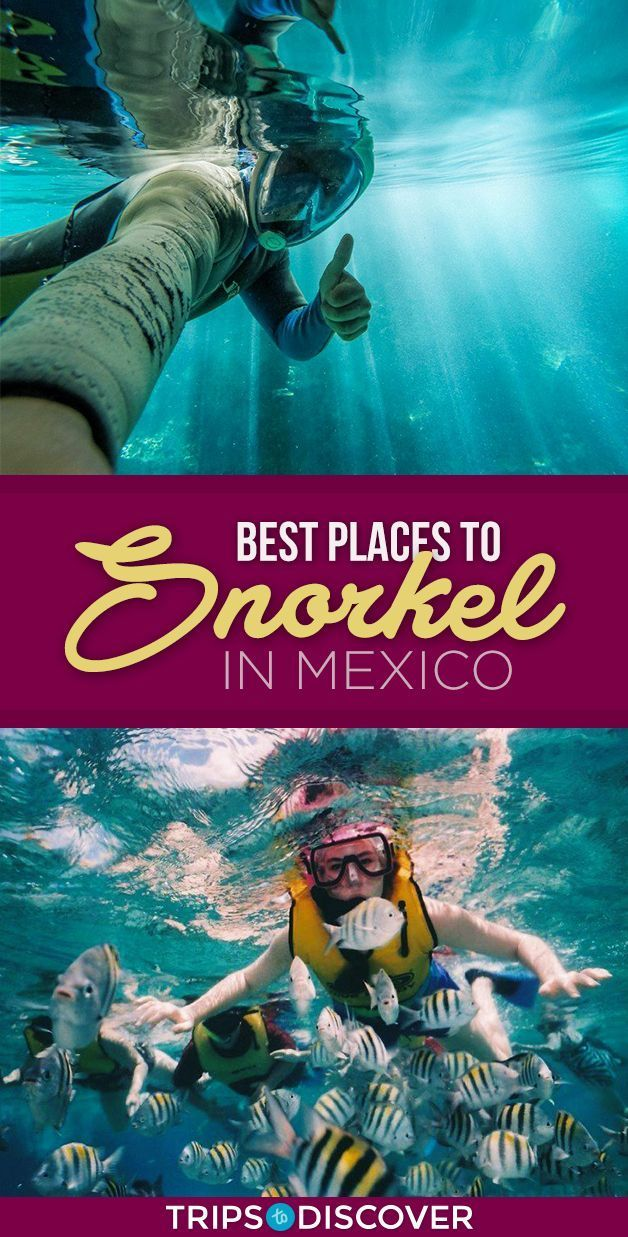 8 Best Places To Snorkel In Mexico