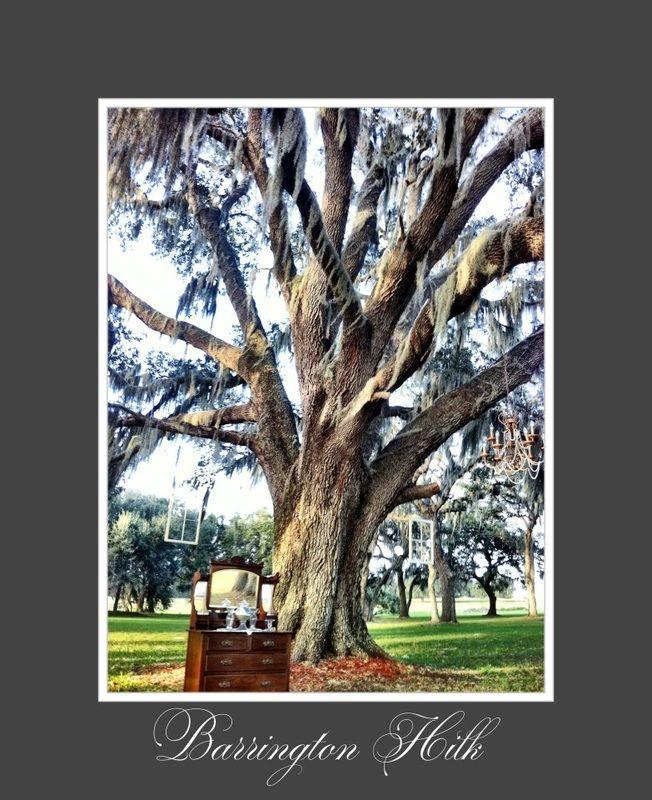 Barrington Hill Farm _ Dade City, FL location, location