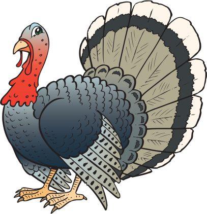 Illustration Of Turkey Truthahn Zeichnung Illustration Gluckliche Kunst