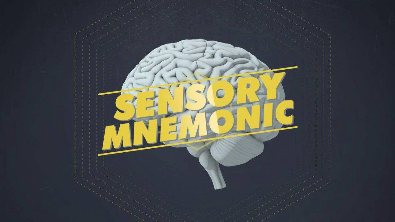 Brain Games Promo | Motion Graphics | Pinterest | Motion graphics