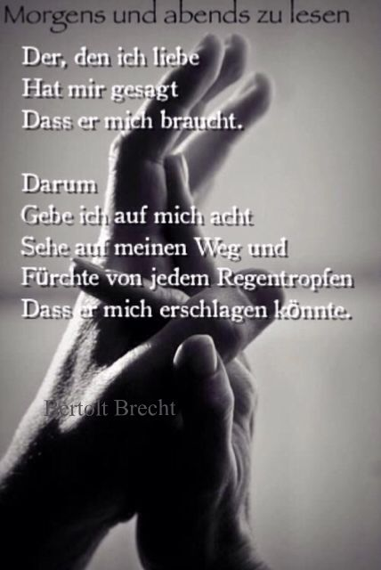 Morgens und abends zu lesen. Brecht. Gedichte. Aus dem Herzen