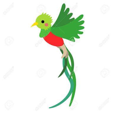 Resultado De Imagen Para Dibujos Del Quetzal Con Imagenes