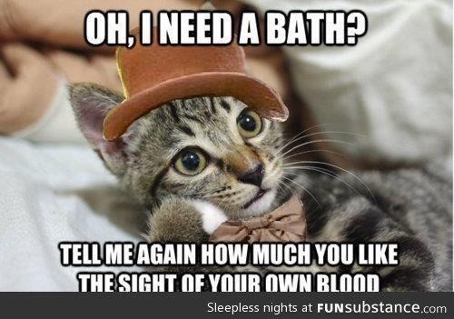Bathe A Cat Funsubstance Com Funny Cat Pictures Funny Cat Memes Funny Animals