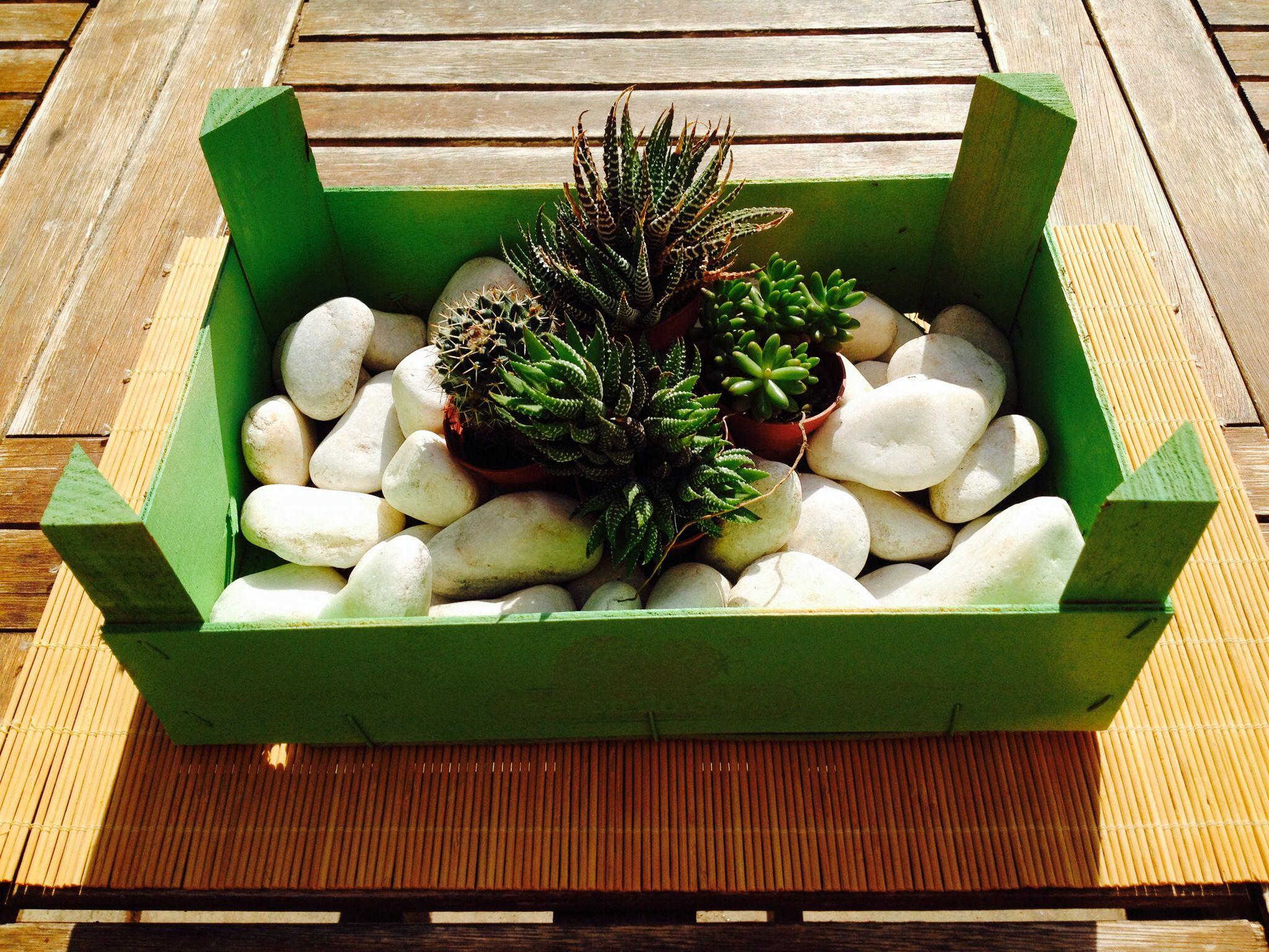 Caja de fresas pintada con spray piedras y cactus ideas para el hogar cajas cajas de fruta - Fresas para piedra ...