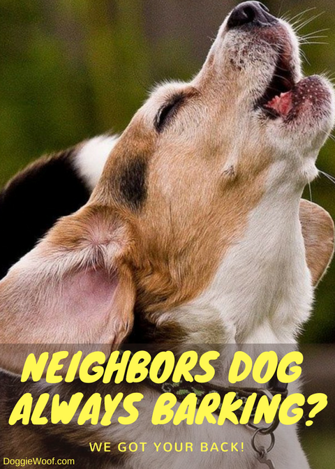 Is Your Neighbor S Dog Keeping You Up At Night We Can Help You With That Http Doggiewoof Com Dog Barking Deterrent Stop Dog Barking Dog Barking Dogs