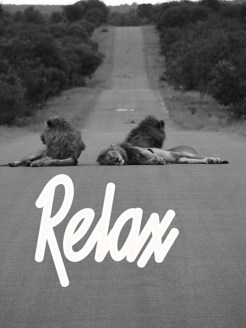 Relax. http://weedcloud-clothing.tumblr.com/post/31918451905/enjoy-the-last-rays-of-sunlight-of-summer