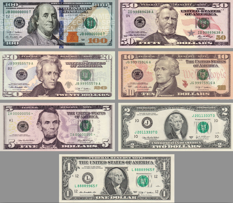 currency paper money plus coins constitutes about