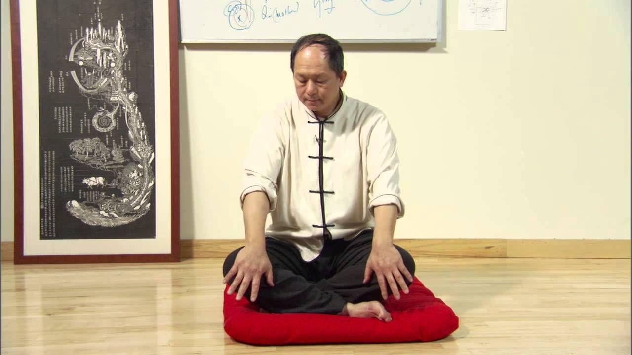 Understanding Qigong DVD 3 (YMAA 6-DVD series) Dr  Yang