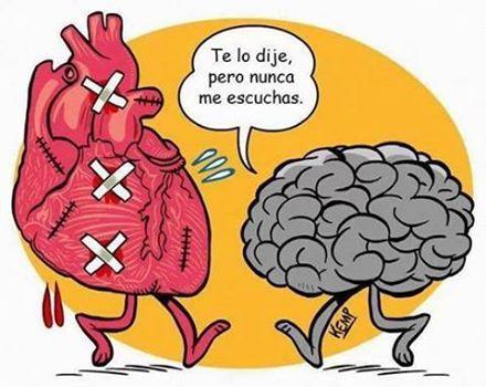 Resultado de imagen de cerebro vs corazón
