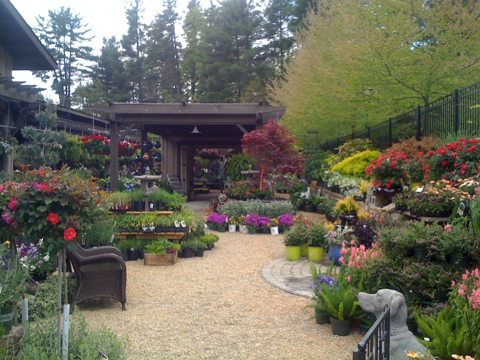 BB Barns Flower Market display, Brevard, NC Garden