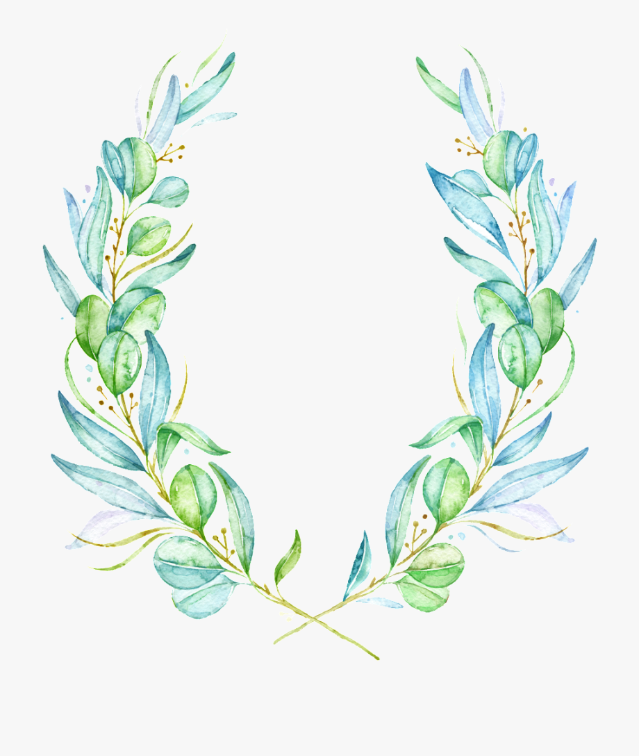 Watercolor Olive Branch Leaves Clipart Rustic Laurel Wreath Png Leaf Clipart Olive Branch Watercolor Splash