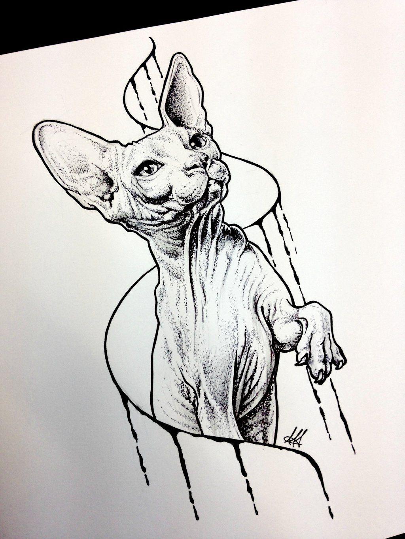 sphynx cat sketch tattoo by antoniettaarnonearts deviantart com on