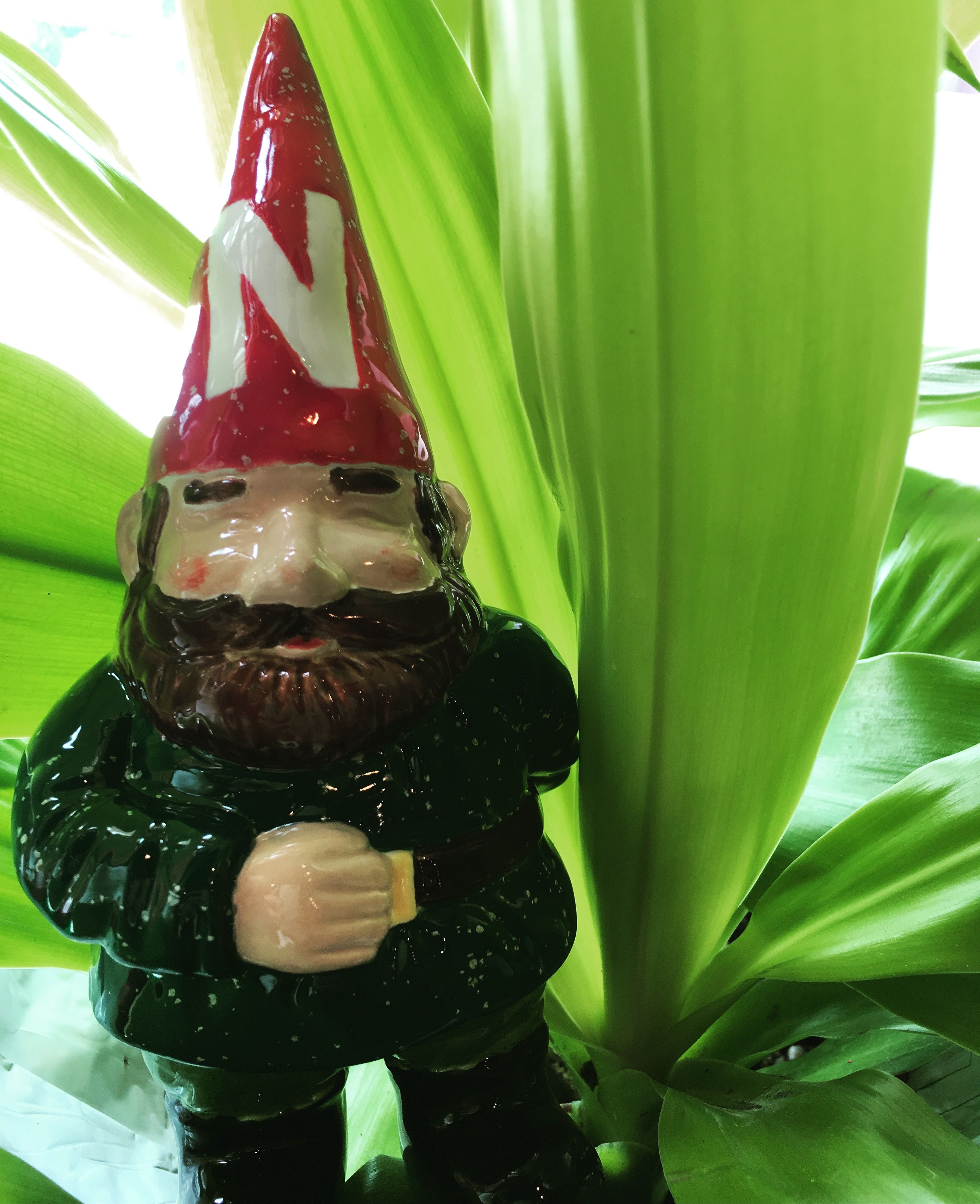 Giant Garden Gnome, Nebraska Corn Huskers Gnome, Garden, Ceramics, Painted  Pottery