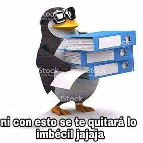 Pin De Morrison En Pinguinos Groseros Memes Para Comentarios Imagenes Para Memes Memes Graciosos Para Whatsapp