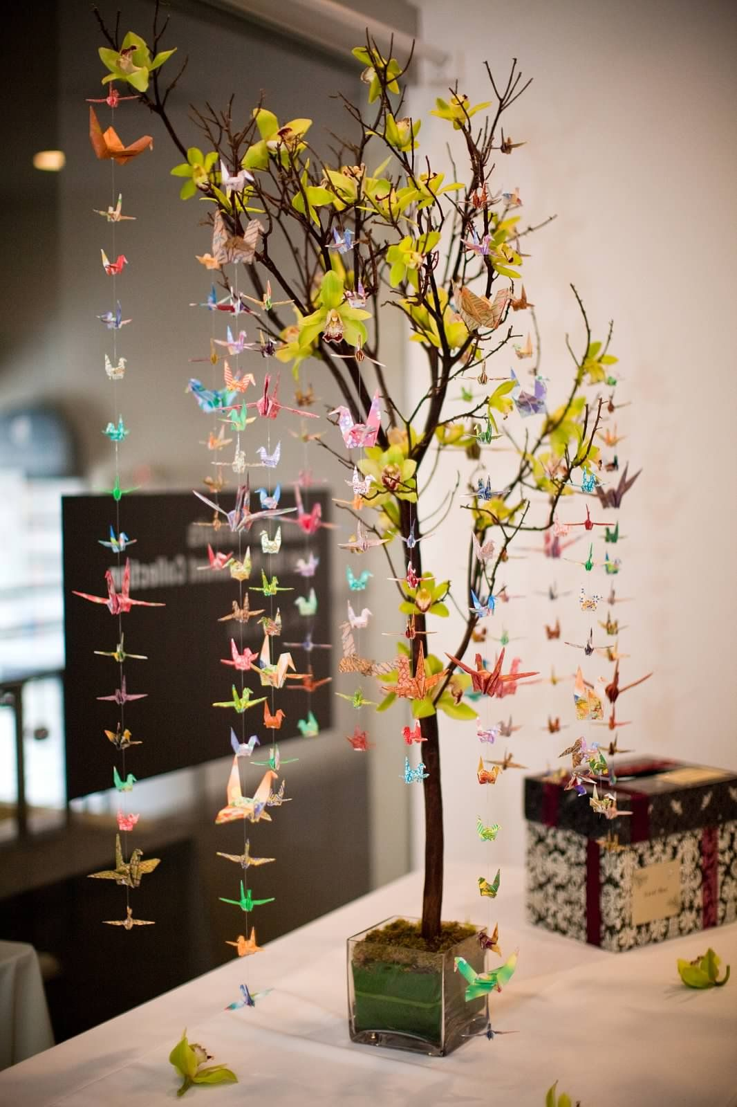 Manzanita branch decorated with origami cranes and