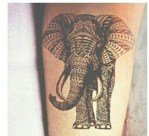 Elephants dont belong in a zoo.