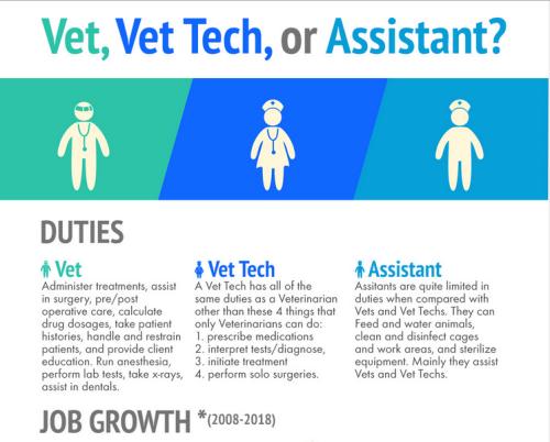 You Know You Re A Vet Tech When Vet Tech School Vet Tech Student Vet Technician