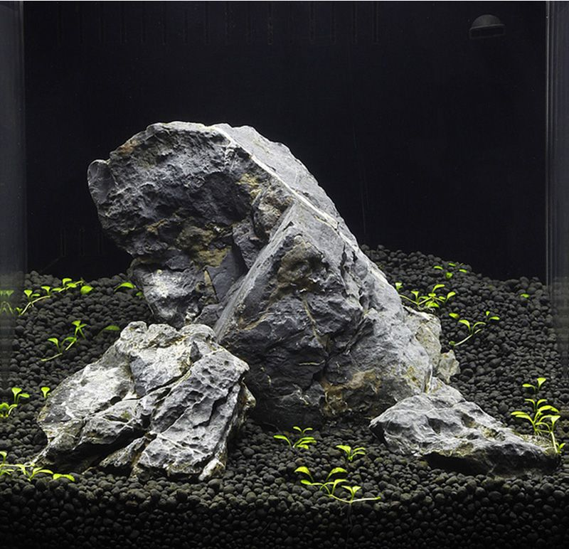 Aquascaping Rocks For Sale