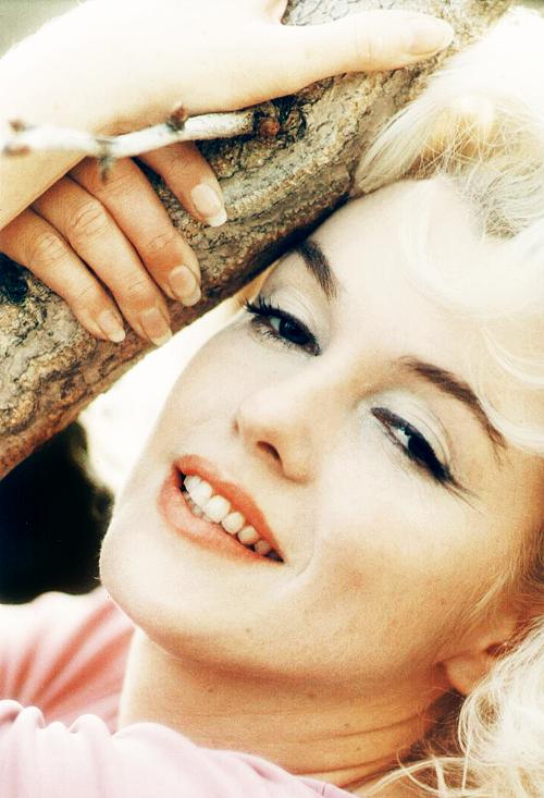 Marilyn Monroe 12305 Fifth Helena Drive Marilyn