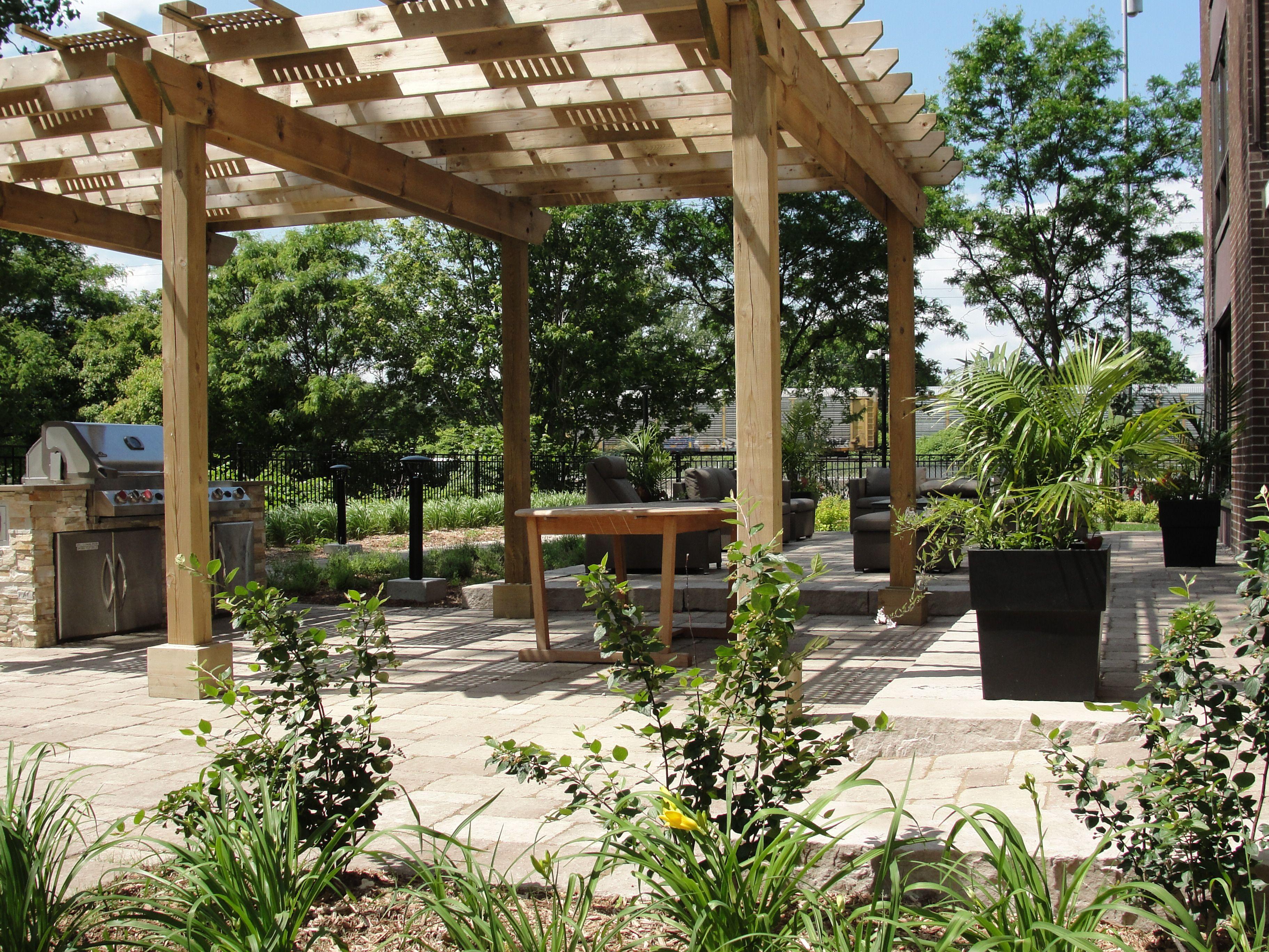 Aménagement d\'une terrasse publique. Pergola en bois de cèdre ...