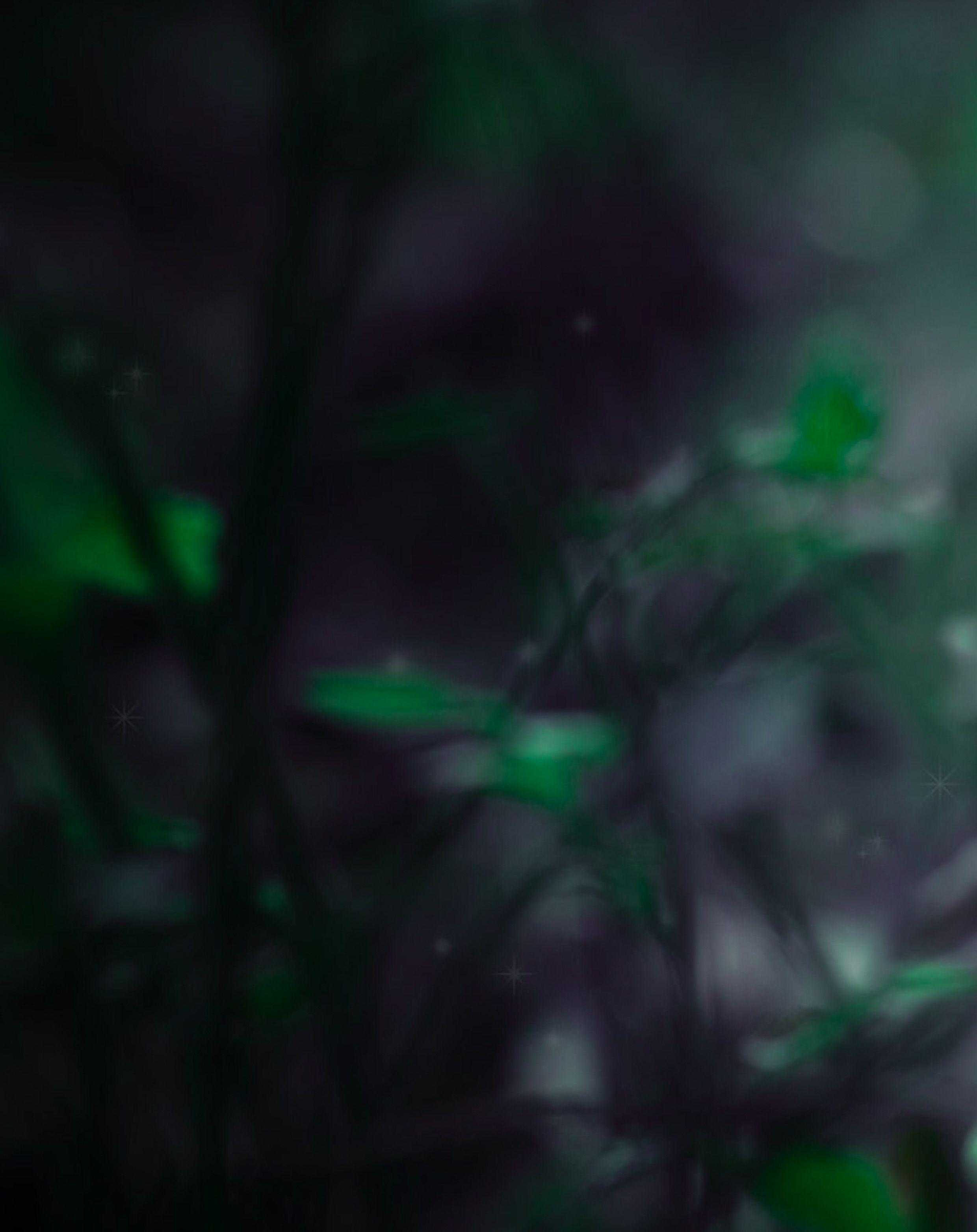 Dark Green Nature Blur Background Free Stock In 2020 Blurred Background Stock Images Free Background Images
