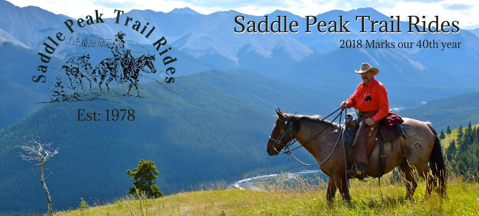 Saddle Peak Trail Rides Trail riding, Trip advisor