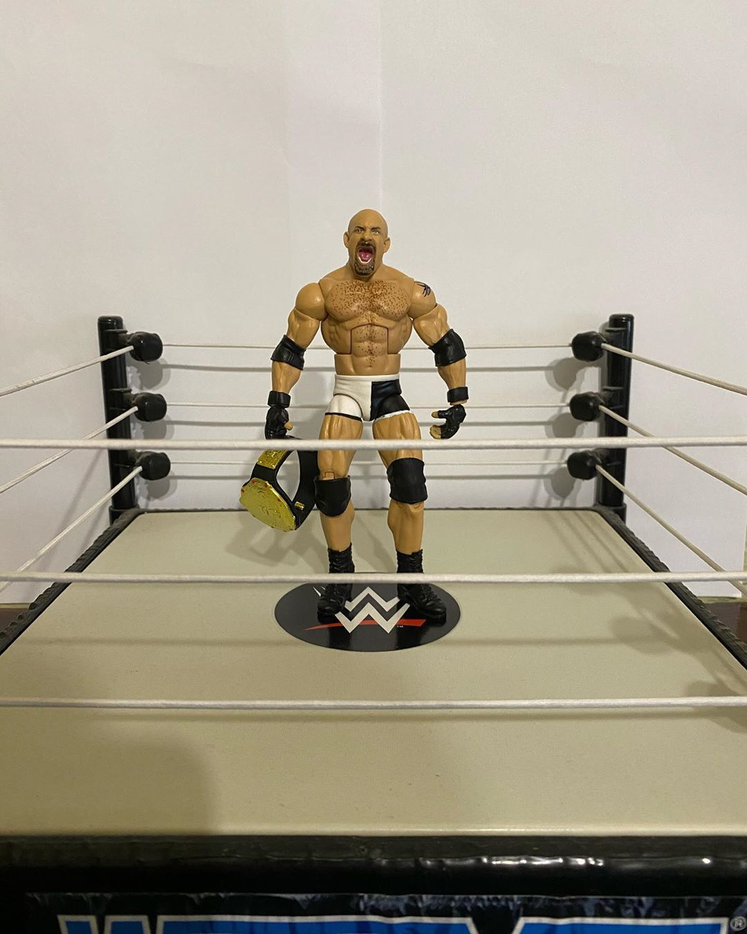 ❓WHOS NEXT ❓ Elite 74 Goldberg depicts his 2003 World Heavyweight championship run! • •  #actionfigures #toys #toyphotography #actionfigurephotography #actionfigure #toycollector #toystagram #marvel #toy #toycommunity #hasbro #toyartistry #starwars #marvellegends #bandai #wrestling #wwe #prowrestling #mma #bjj #ufc #jiujitsu #boxing #grappling #nxt #raw #aew #muaythai #kickboxing #fitness