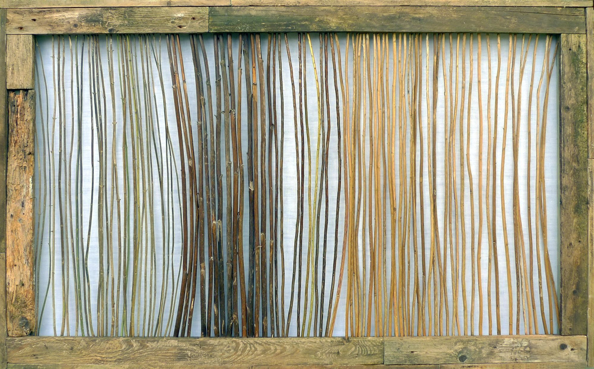 Jan Karpíšek, The Stems, dry stalks of nettles, goldenrods, hollyhocks et al., old planks from the garden, cca 101x166cm, 2015
