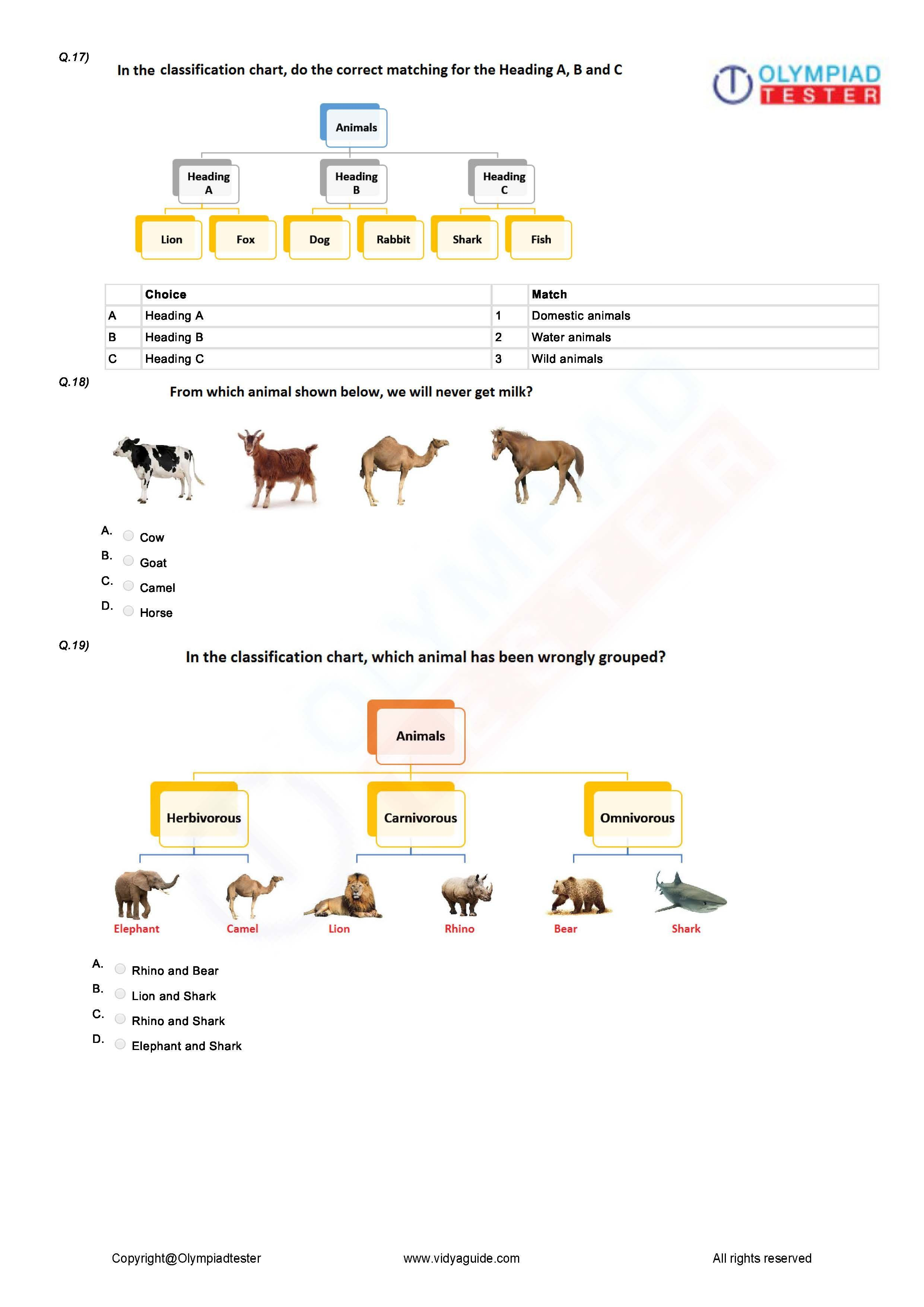 Pin On Best Grade 1 Olympiad Worksheets And Sample Papers