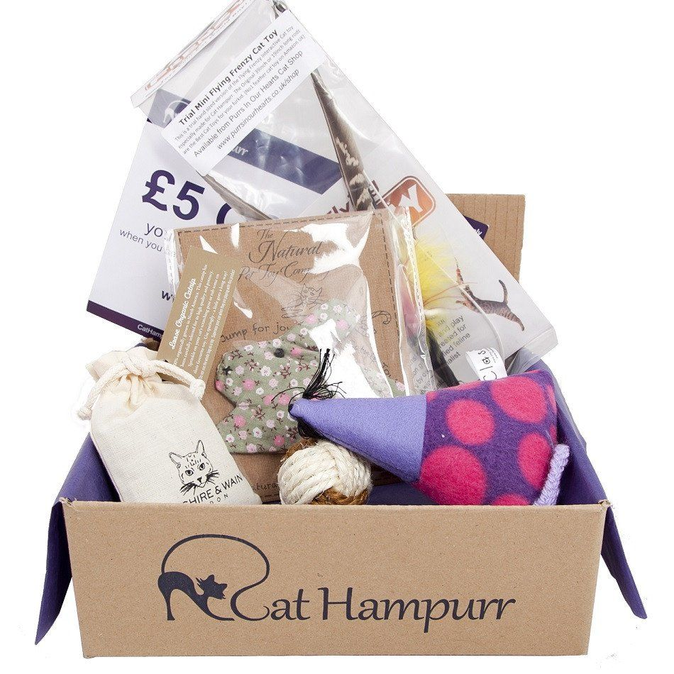 Cat Toy Gift Box Cat Hampurr Gifts For Cat Lovers Styletails Cat Toys Christmas Cats Cat Lover Gifts