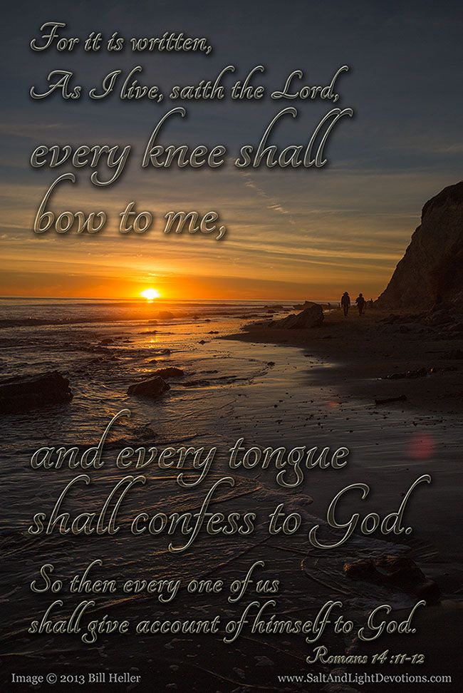 11 For it is written, As I live, saith the Lord, every knee shall bow to me, and every tongue shall confess to God.   12 So then every one of us shall give account of himself to God.  --Roman 14:11-12 KJV www.saltandlightdevotions.com
