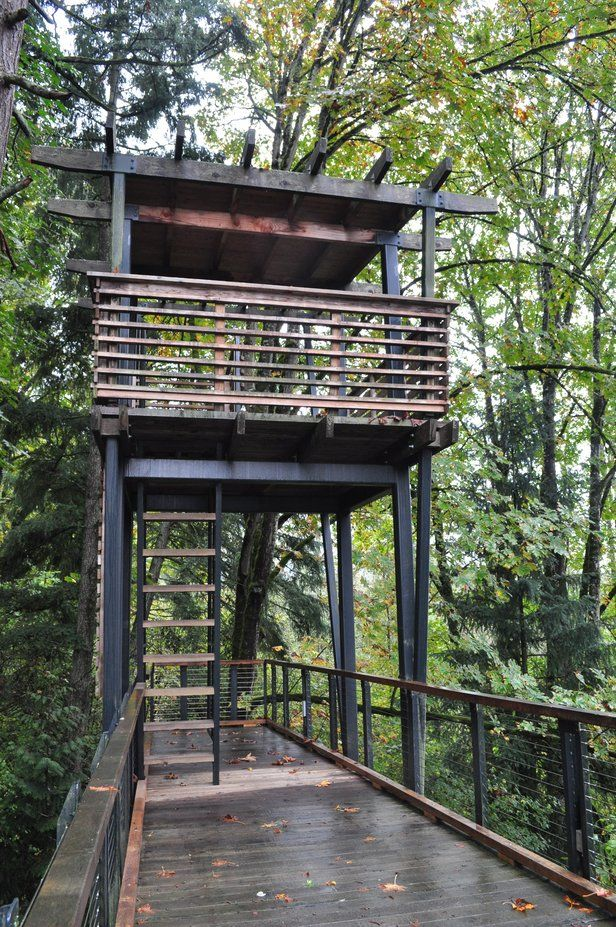 Best Rainy Day Parks and Playgrounds Around Seattle
