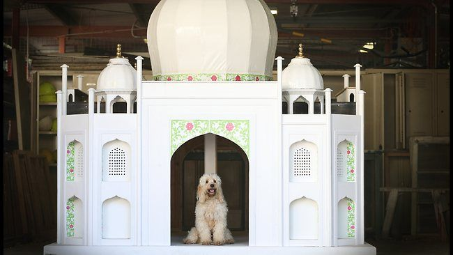 it's the most stunning, luxury dog's houses ever – petsfans | no