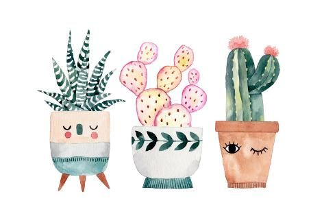 Art Print: Watercolor Hand-Drawn Illustration with Cactus and Succulents. Green House Plants Illustrations. Cu by Maria Sem : 24x16in -   18 planting Illustration paintings ideas