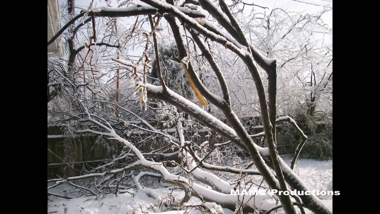 Ice Storm 2009 Paducah Ky Slideshow With Images Ice Storm